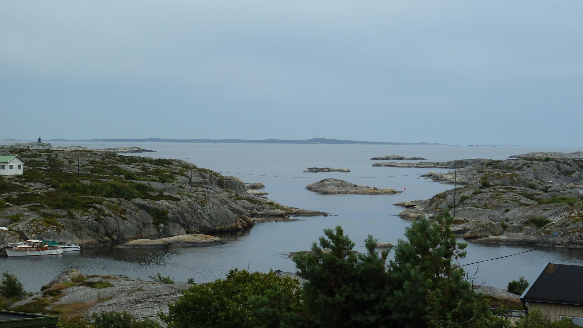 Lauer, Hvaler juli 2011