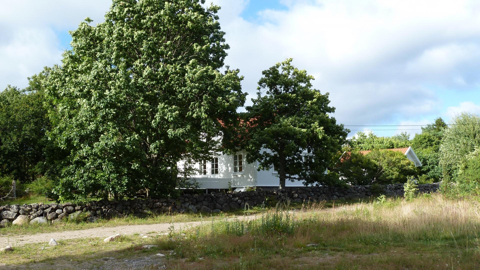 Havna på Søndre Sandøy, Hvaler juli 2010